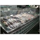 empresa de expositor refrigerado para peixe na Mira Estrela